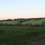 The rolling hills of Nannup